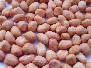 Groundnut stop Injury Bleeding, Swelling, Unseen injury, Rickets and Chest Pain