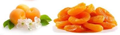 Health Benefits-Disease Cure Apricot