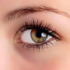 Rectangular Face Eyebrows