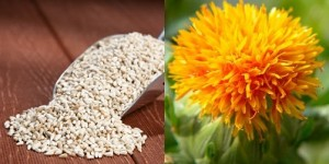 Safflower Cures Sexual Disability-Constipation-Heart Disease-Female Disorders-Asthma and Eczema