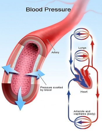 alcohol recovery blood pressure