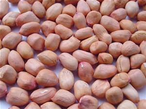 Groundnut Remedies for diabetes