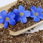 Rejuvenate The Body Through Linseed
