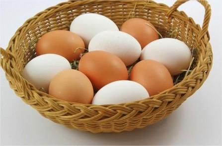 Egg fix